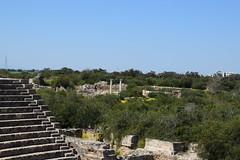 DSC_0238 (mark.greefhorst) Tags: cyprus northerncyprus salamis ancientworld roman