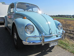 VW Beetle 1200 (v8dub) Tags: vw beetle 1200 volkswagen fusca maggiolino käfer kever bug bubbla cox coccinelle schweiz suisse switzerland bleienbach german pkw voiture car wagen worldcars auto automobile automotive aircooled old oldtimer oldcar klassik classic collector