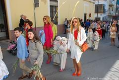 DSC_0079 (M. Jalón) Tags: borriquita semana santa porcuna domingo ramos procesión palmas 2017