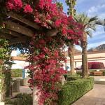 La Quinta, CA thumbnail