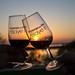 Le Printemps des Vins vous donne rendez-vous l'année prochaine !
