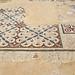Israel-04855 - Palace Mosaics