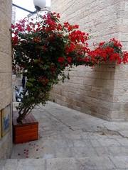 Joodse wijk oude stad Jeruzalem