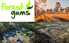 Lot 308 Woodlands Dr, Weston NSW