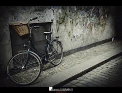 Copenhagen (III) (Yiannis Chatzitheodorou) Tags: copenhagen denmark δανία bicycle urbanlandscapce