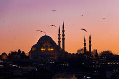 Istanbul 23.3.2017 (Tuomas Saloniemi) Tags: sunset dusk hagiasofia hagia sofia instanbul