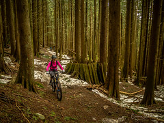 Someone likes their new bike (kendyck1) Tags: fromme mountainbike mountainbiking natasha spring snowbiking