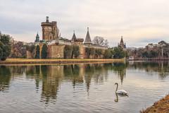 Der Schwan (Fotos4RR) Tags: schwan swan franzensburg laxenburg niederösterreich loweraustria österreich austria autriche burg chateau franz spiegelung reflection castle mirroring bird vogel