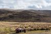 M3W Glen Esk-16331 (Cal Fraser) Tags: 3wheeler car glenesk m3w morgan red scotland threewheeler unitedkingdom gb