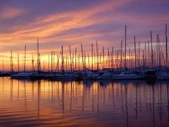 μαρίνα Αλίμου 1 - Alimos marina (st.delis) Tags: ιστιοφόρα κατάρτια θάλασσα ουρανόσ χρώμα ηλιοβασίλεμα φωσ μαρίνααλίμου αθήνα ελλάδα sailing boatsmastsseaskysunsetcolouralimos marina athens hellas lumix