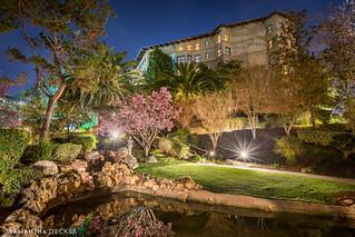 Langham Japanese Gardens