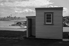 The Throne Room (Bruce Buckman) Tags: auckland northhead newzealand bw ilforddelta100 film 35mmfilm canoneos33