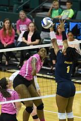Volleyball-vs-UNCG, 10/18, Chris Crews, DSC_8037 (PsychoticWolf) Tags: 49ers charlotte greensboro ncaa ninermedia spartans unc uncc uncg volleyball