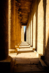 Edfu Temple (mikeriddle1984) Tags: adventure edfu egypt history nile temple travel ancient carving hieroglyphics stone king pharaoh rameses