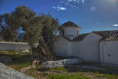 Ταξιάρχης Δάγλα, Μαρκόπουλο (HDR) (TbocII) Tags: μαρκόπουλο δάγλα ταξιάρχησ βυζαντινόσ 13οσ αιώνασ ναόσ σταυροειδήσ τρούλοσ μνημείο αττική μεσόγεια ελλάδα greece markopoulo attica mesogeia 13th century taxiarchis dagla monument byzantine church freecross dome canon eos 60d hdr olive tree