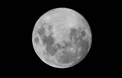 Night before Full Moon (Merrillie) Tags: science glow crater detailed circular space round lunar mysterious moonlight sphere black cratering blackbackground night impactcrater full celestialbody astronomy celestial fullmoon moon nighttime closeup sky light orb astrology nightime surface phase bright nature cosmos universe moonsurface luna onblack detail