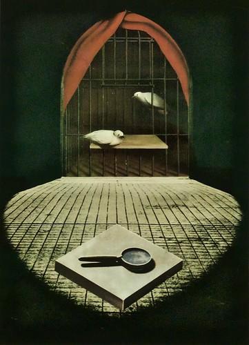 Untitled (1981) - Fernando de Azevedo (1923-2002)
