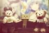 IMG_8593 (vovka43rr) Tags: anime japanese robot amazon box manga hobby cardboard domo kawaii akihabara kaiyodo photooftheday picoftheday kotobukiya yotsuba danbo toyphotography revoltech danboard cardbo toyography vovka43r toystagram danbothetraveler
