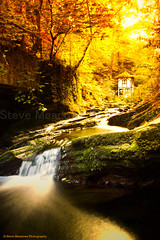 Little Isabella, Groudle Glen (Steve Meadows Photography) Tags: autumn red orange yellow canon river that eos 350d stream long exposure colours little id taken glen damn mann isabella wish autumnal isleofman slowmotion groudle coth supershot i coth5 stevemeadowsphotography