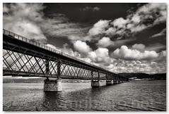 Ponte Eiffel (bw) (vmribeiro.net) Tags: bridge portugal do eiffel ponte castelo viana