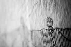 Affixed (belleshaw) Tags: blackandwhite streetart texture paper poster drawing wheatpaste balboapark sandiegoca