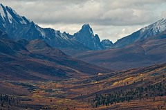 Tombstone Mountains