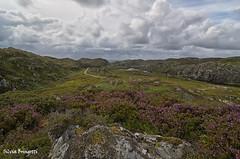 Highlands Mood (silvia brisi) Tags: road travel flowers wild sky verde green nature clouds landscape scotland highlands nikon rocks nuvole afternoon natura cielo fiori rocce viaggi paesaggio lochinver scozia viaggiare selvaggio d7000