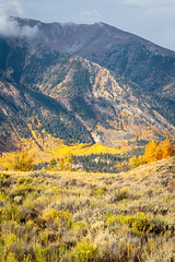 Fall near Twin Lakes, Colorado (TeeJay_S) Tags: trees storm mountains fall nature clouds outdoors colorado seasons seasonal lakes twin fallfoliage foliage peaks aspen independencepass