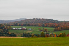 East Hardwick 2 (Diane) Tags: fall vermont