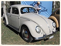 VW Beetle Split Windows 1952 (v8dub) Tags: auto old windows classic car vw bug volkswagen automobile beetle automotive voiture german cox oldtimer split oldcar collector kfer coccinelle kever fusca aircooled wagen pkw klassik maggiolino bubbla worldcars