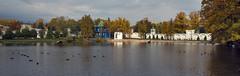 #Monastery #pond (Andrey Velichko) Tags: autumn reflection nature cat pond pigeon pigeons ducks monastery                  nikolougreshsky nicolougreshsky