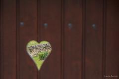can you see my heart (Leroty Lucie) Tags: door garden heart jardin coeur porte