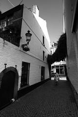 La venelle (ridenpydam) Tags: maastricht paysbas pavs pave limbourg ruepave