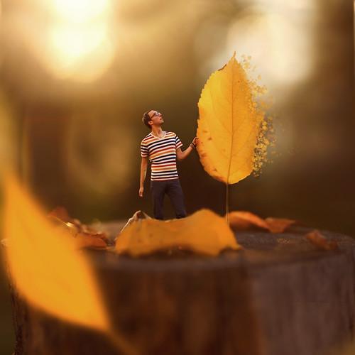 All Fall In