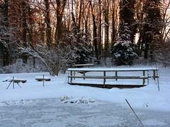IMG_1593 b Dezember (Traud) Tags: schnee winter pool germany garden bayern deutschland bavaria teich garten steg laufen salzach naturschutzakademie