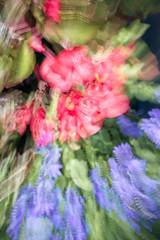 20140928-_DSC5580-96.jpg (Stephen D'Agostino) Tags: toronto montage yorkville flowersplants photoimpressionism