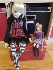 CIMG8039 (Ninotpetrificat) Tags: japan doll sao mueca azone obitsu asuna 13doll luluna
