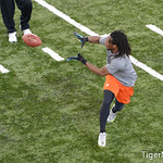 DeAndre Hopkins Photo 12