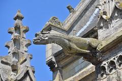 Conty (Somme) - Eglise Saint-Antoine - Gargouille (Morio60) Tags: 80 glise picardie somme saintantoine conty