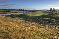 Osprey hole #10 (gwhiteway) Tags: travel 2 3 canada green tourism nature wet colors sunrise newfoundland golf landscape hole 14 stjohns course dew golfing 17 nl 18 clovelly moisture osprey golfscape
