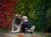 Sharing (Hestefotograf.com) Tags: autumn friends boy dog dogs norway kid dof friendship hound grand canine greatdane norwegian trust sharing bond kiddo bestfriend bestfriends watchdog watcher naturalframe boychild danois