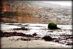 Green Rock (RobW_) Tags: sunset seaweed green rock october colours greece monday zakynthos 2014 freddiesbar tsilivi diaryphoto mdpd2014 oct2014 mdpd201410 06oct2014