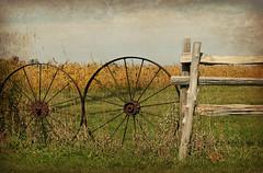 Plain and Fancy (Doris Burfind) Tags: fence circle countryside rust farm spokes wheels wagonwheel
