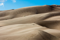 2D1B8964.jpg (Nuckols Photography) Tags: sunset sky blackandwhite nature clouds outside nationalpark colorado desert outdoor wildlife dunes roadtrip wilderness goldenhour greatsanddune
