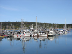 Sointula Harbour (Joli from the North) Tags: vancouverisland sointula malcolmisland vancouverislandnorth gonorthisland