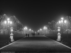 Prato della valle (Nicholas Rossetto) Tags: padova padua prato della valle bianconero blackwhite monochrome monocromo nikon d7100 nicholas rossetto nebbia fog lampioni lights people persone addobbi decorative 18140mm