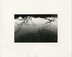 (?) Tags: darkroomprint kyoto japan fiber warmtone ilford