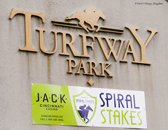 Turfway (Casey Laughter) Tags: racehorse turfway thoroughbred horse horseracing horses winner loser fun racing racetrack race track saddlecloth tack gate taa