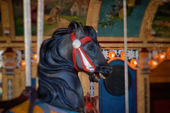 The Wonderful Dark Horse (SunnyDazzled) Tags: carousel horse dark black red bridle janes brooklyn history restoration antique look vintage photo treatment newyork city landmark