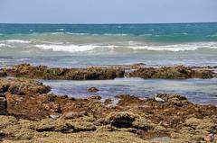 DSC_6948 (Tim Beach) Tags: great ocean road melbourne victoria australia port fairy twelve 12 apostles princetown apollo bay beach sea water